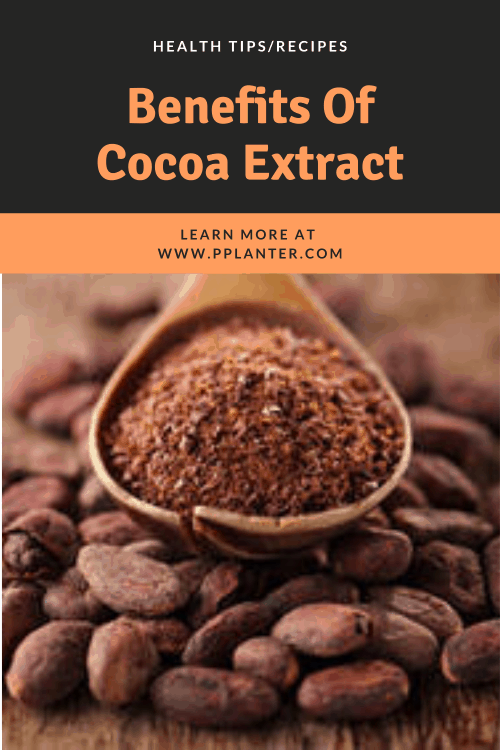 benefits-cocoa-extract